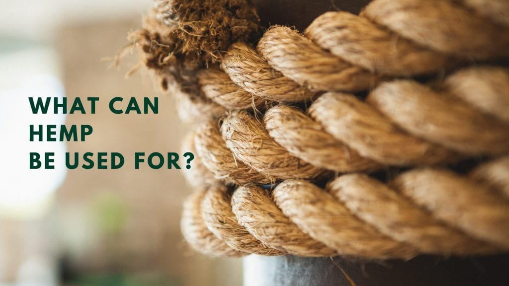 WHAT CAN HEMP BE USED FOR?